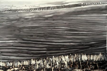 Burnt field, 45x30, ink wash,1974